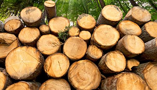 Link zu Holzfeuerungen